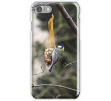 A Little Blue Tit iPhone Case/Skin