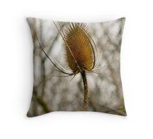 Dry Teasel Flowerhead Throw Pillow