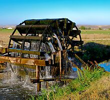 Waterwheel Irrigating Fields by Jim Terry