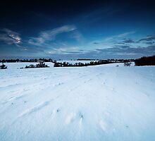 The Other Side of Winter's Promise by Andy Freer