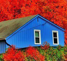 Blue House by EBArt