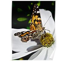Nectar of life Poster
