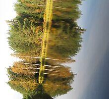 Autumnal Mirror Image by linderel