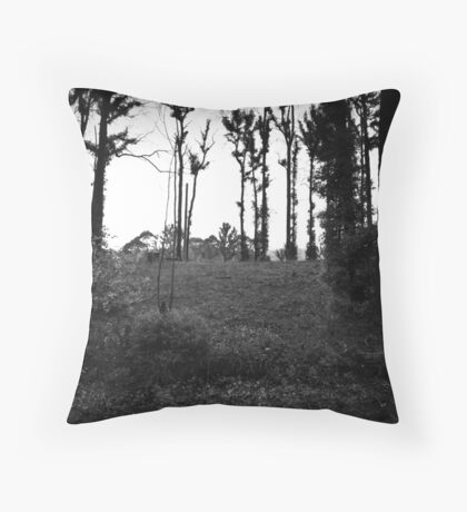 M2 Throw Pillow