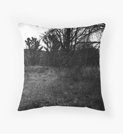 M10-2 Throw Pillow