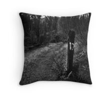 M17 Throw Pillow