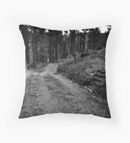 M19 Throw Pillow