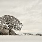 Snowy landscape, Elloughton, East Yorkshire, UK. by Nick Barker