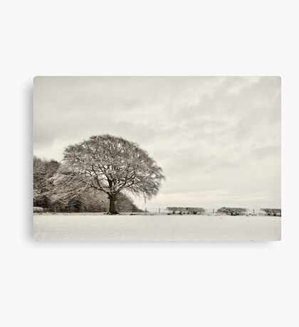 Snowy landscape, Elloughton, East Yorkshire, UK. Canvas Print
