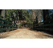 """ Bridge to yesterday "". For Oscar Photographic Print"