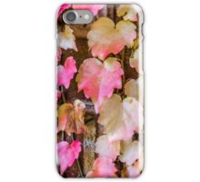 Autumn Leaves - Uralla NSW Australia iPhone Case/Skin