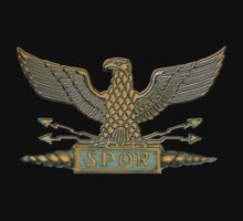 Legion Eagle Copper by Larry Oates