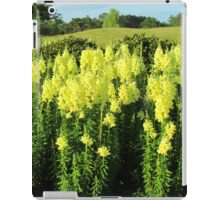 Field Of Yellow Iris iPad Case/Skin