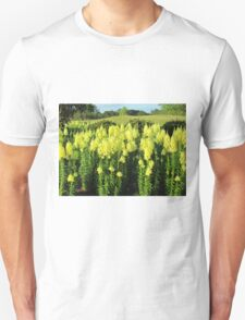 Field Of Yellow Iris T-Shirt