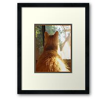 Mia Mesmerized Framed Print