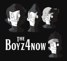 Meet The Boyz4Now! by catdinosaur
