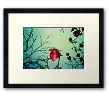 magnolia and moon Framed Print