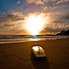 Flynns Beach by David Petranker