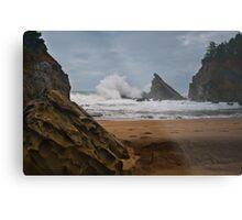 Simpsons Beach, Cape Arago, Oregon Metal Print