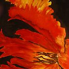 Parrot Tulip Flame by gilbertlamm