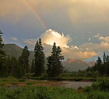 Rainbow Light by Robert C Richmond