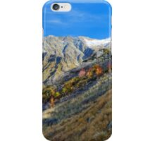 NZ Alpine iPhone Case/Skin
