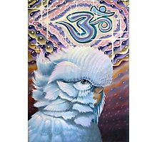 Bubble G'Ohm Budgie-Sattva Photographic Print