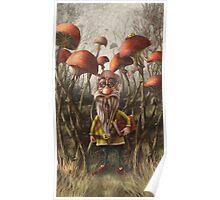 Aalbert Van Edeborg from Mushroom Mountains Poster