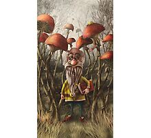 Aalbert Van Edeborg from Mushroom Mountains Photographic Print