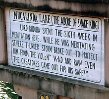 Sign at Mucalinda Lake by Angie Spicer