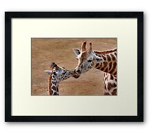 Mother and Child... Framed Print
