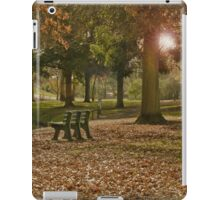 Autumn in the Wetlands iPad Case/Skin