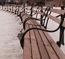 Bench by MichaelWilliams