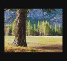 Walled round with rocks as an inland island; here are the walls of Yosemite Valley T-Shirt