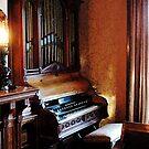 Pipe Organ in Living Room by Susan Savad