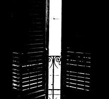 Black Doors by TheRoacH