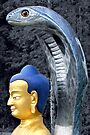 Buddha and Serpent - Kagyu Samye Ling, Dumfriesshire, Scotland by simpsonvisuals