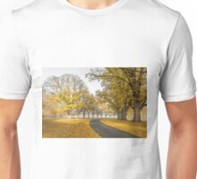 Gostwyck Road is lined with Gold - Uralla NSW Australia Unisex T-Shirt