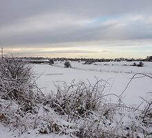 Snow in Poulton-Le-Fylde   by Lilian Marshall