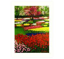 Spectacular Netherlands Tulips Garden Art Print