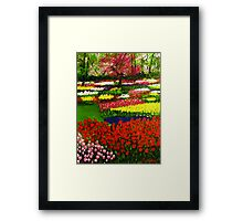 Spectacular Netherlands Tulips Garden Framed Print