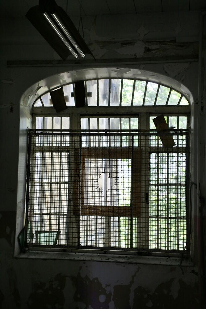 asylum window #5 by jbiller