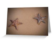Stars on the Beach - Moreton Island Qld Australia Greeting Card