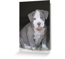 Muggsy Greeting Card