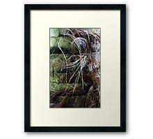 Hairy Habitat Framed Print