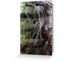 Hairy Habitat Greeting Card
