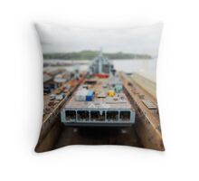 Looking down from Castle Drive Throw Pillow