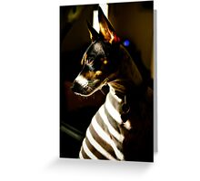 Prisoner to the light Greeting Card