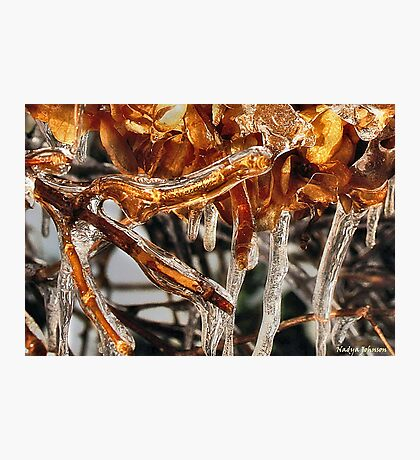 Ice Sculpture Photographic Print