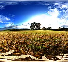 cut wheatfields of west chinnock by itsrich